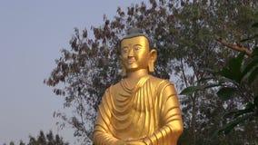 Gouden Lordboedha standbeeld in Lumbini, Nepal stock footage