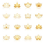 Gouden Lotus-symboolpictogrammen Vector bloemenetiketten voor Wellness Ind. Stock Foto