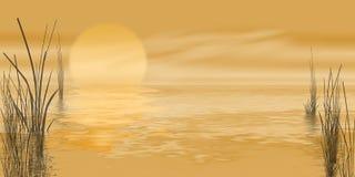 Gouden moeraszonsopgang stock illustratie