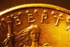Gouden muntstuk Stock Afbeeldingen