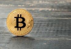 Gouden muntstuk bitcoin Stock Foto