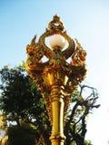 Gouden naga Royalty-vrije Stock Foto's