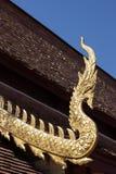 Gouden naga Stock Foto's