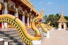 Gouden naka in Thailand Stock Foto's