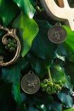 Gouden Nieuwjaarsymbool Royalty-vrije Stock Fotografie