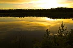 Gouden noordelijke zonsondergang stock afbeeldingen