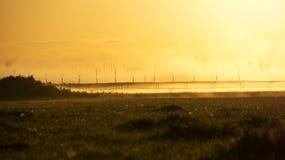 Gouden ochtendgloed over de paddock Royalty-vrije Stock Foto's