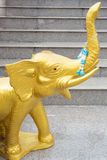 Gouden olifant Royalty-vrije Stock Afbeelding