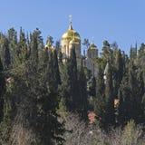 Gouden Overkoepeld Russisch Klooster Ein Kerem stock afbeelding