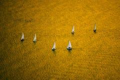 Gouden overzees stock foto