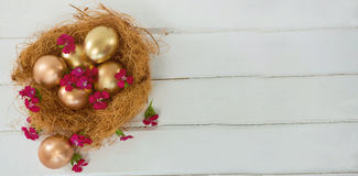 Gouden paaseieren in nest Stock Foto