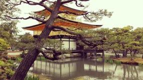 Gouden Paviljoen Kinkaku -kinkaku-ji Stock Fotografie