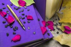 Gouden pen en oude boeken Royalty-vrije Stock Foto's