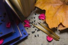 Gouden pennen en oude boeken Royalty-vrije Stock Afbeeldingen