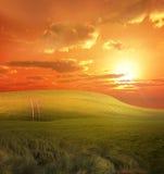 Gouden platteland Stock Afbeeldingen