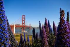 Gouden poortbrug en bloemen Stock Foto