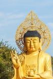 Gouden Reuzeboedha, het Hoofdstandbeeld van Boedha bij Sanbanggulsa-Tempel, Sa Stock Afbeeldingen