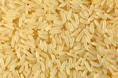 Gouden rijst Royalty-vrije Stock Fotografie