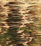 Gouden Rimpelingen op het Water Stock Afbeeldingen