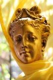Gouden schoonheid stock foto