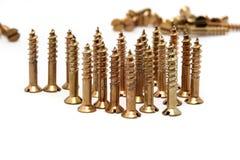 Gouden schroeven in ruw Royalty-vrije Stock Afbeeldingen