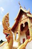 Gouden serpent Royalty-vrije Stock Foto