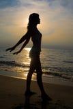 Gouden silhouet royalty-vrije stock fotografie