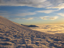 Gouden sneeuw bij schemer Stock Foto's