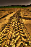 Gouden spoor Royalty-vrije Stock Foto