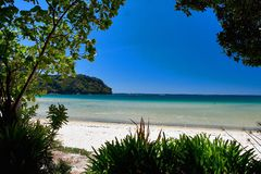 Gouden strand Abel Tasman Stock Afbeelding