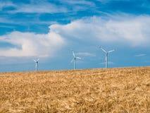 Gouden Tarwegebied met windturbines tegen blauwe hemel Stock Afbeeldingen