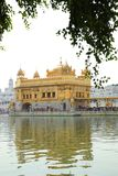 Gouden Tempel in Amritsar India stock foto's