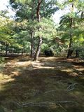 Gouden tempel in Kyoto, park Royalty-vrije Stock Afbeelding