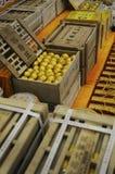 Gouden theeeieren (1st CSITF 2012) Royalty-vrije Stock Foto's
