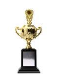 Gouden trofeeëntoekenning Royalty-vrije Stock Afbeeldingen