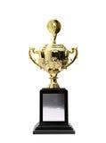 Gouden trofeeëntoekenning Royalty-vrije Stock Afbeelding