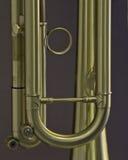 Gouden Trompetdetail Stock Afbeeldingen
