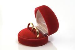 Gouden trouwringen in rode doos Royalty-vrije Stock Foto's