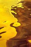 Gouden uur, mensen op het strand Stock Afbeelding