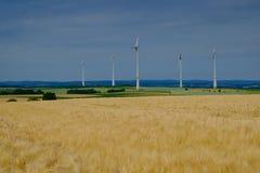 Gouden van de tarwegebied en wind turbines Stock Fotografie