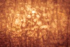 Gouden van de de zomeraard abstract concept als achtergrond, zachte nadruk Stock Fotografie