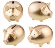 Gouden varken als geld-doos Stock Fotografie