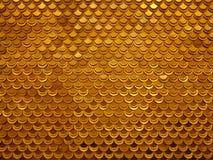 Gouden vissen Stock Foto
