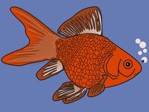 Gouden Vissen in Blauwe Wateren Royalty-vrije Stock Foto's