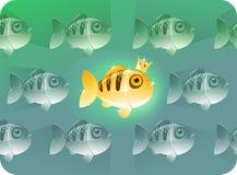 Gouden vissen | De reeks van concepten Stock Fotografie
