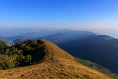 Gouden Weide in de berg Stock Afbeeldingen