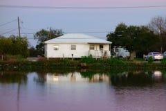 Gouden Weide, Louisiane Stock Afbeeldingen