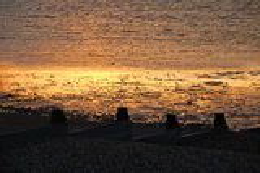 Gouden zand bij whitstable eb Stock Foto