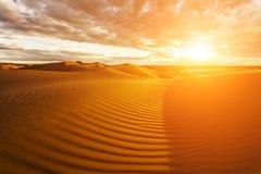 Gouden zand en duinen van de woestijn mongolië royalty-vrije stock foto