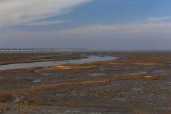Gouden zeewier, de netten in de getijdevlakte, de langste brug in de wereld Stock Afbeelding